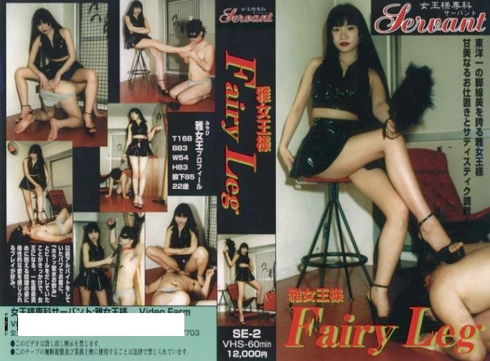 SE-2 Fairy Leg