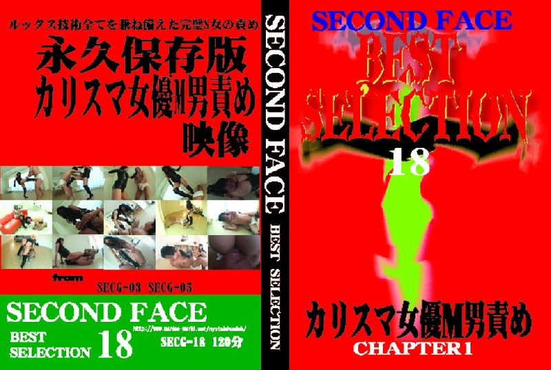 SECG-18 SECONDFACE BEST SELECTION 18
